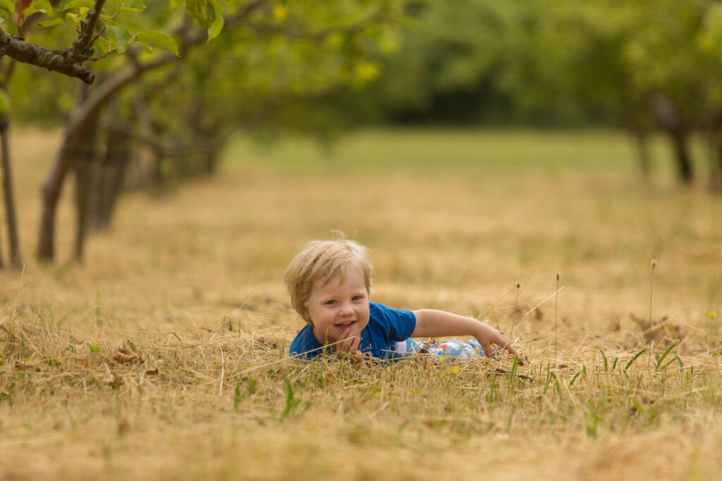 boy in orchard