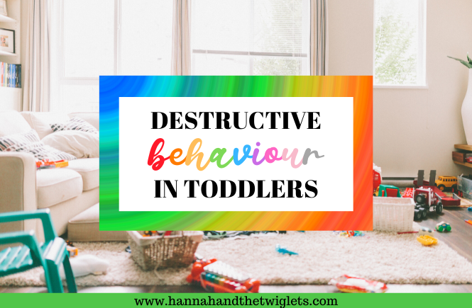 destructive behaviour in toddlers