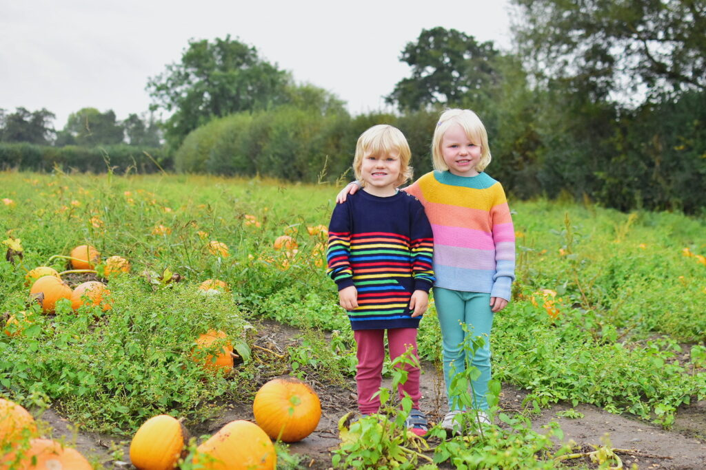 picking pumpkins at Garson's Farm