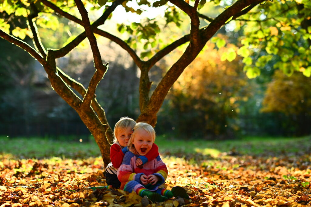 winkworth arboretum things to do with kids in autumn