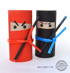 toilet roll ninjas