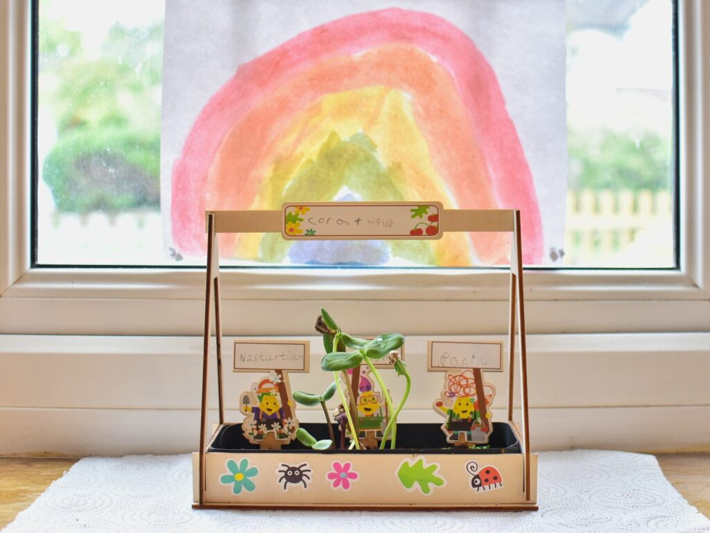 Greenhouse activity toucanBox craft kit