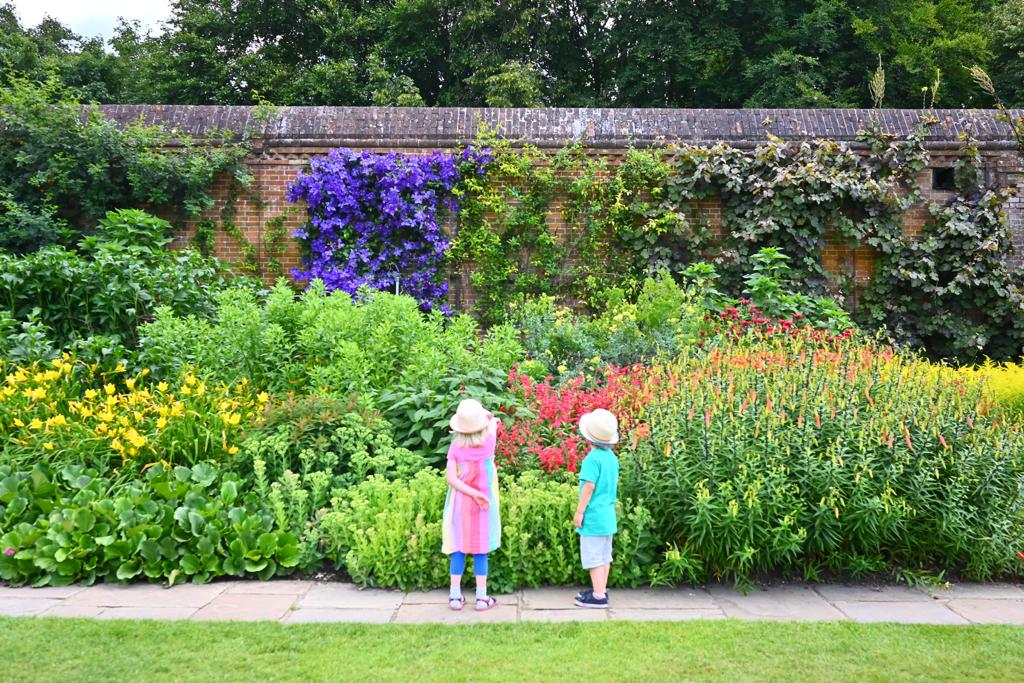 herbaceous border at Cliveden