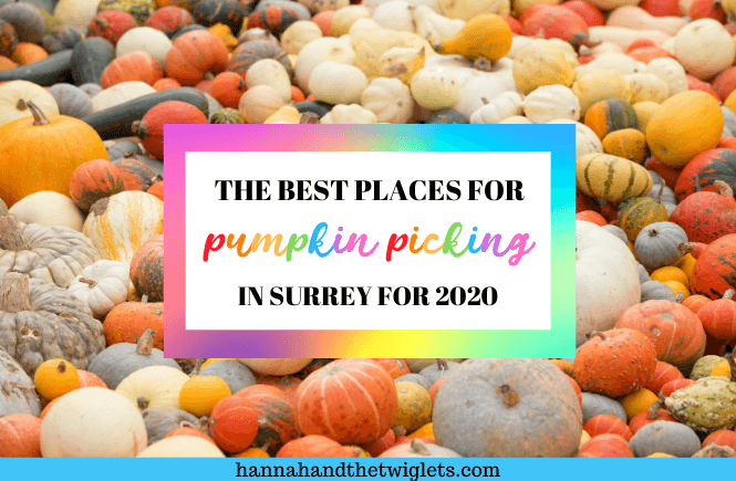 best places for pumpkin picking in Surrey 2020